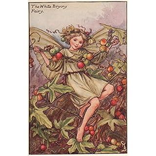 White Bryony Fairy by Cicely Mary Barker. Autumn Flower Fairies, print c1935