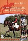 Grundausbildung für Reitpferde Teil 2: Das 5-jährige Pferd