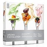 Molecule-R - Aroma R-Evolution - Kit de sabores volátiles