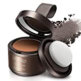 Hairline Modified Shadow Powder Cover Natural Instant Hairline Shadow Powder Hair Concealer Powder