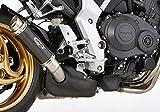 Auspuffblende Carbon Honda CB1000R 2008-2016