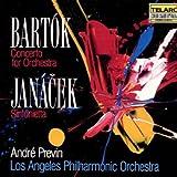 Concerto Orchestra Sinfonietta
