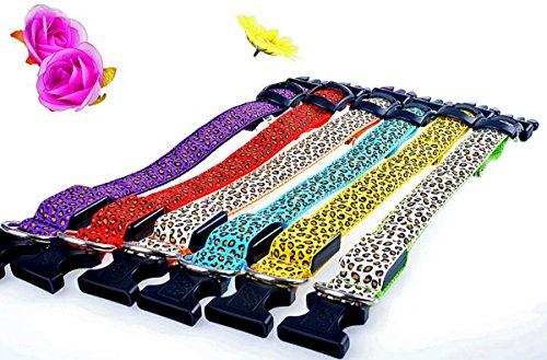 LED Halsband in verschiedenen Farben und Größen - Wasserdichte Halsbänder LED-Blinklicht-Band-Gurt für Haustiere Hunde und Katzen - Direktversand aus Deutschland von ETU24® (Grün, 50 Zentimeter)