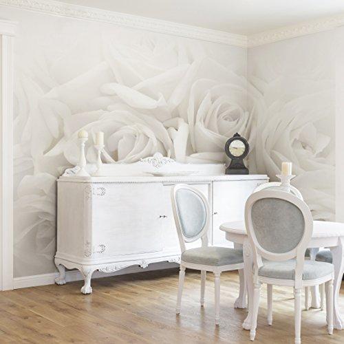 *Apalis Rosentapete – Vliestapete – Weiße Rosen – Blumen Fototapete Breit | Vlies Tapete Wandtapete Wandbild Foto 3D Fototapete für Schlafzimmer Wohnzimmer Küche | Größe HxB:255x384cm*