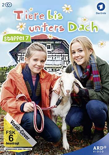 Staffel 7 (2 DVDs)