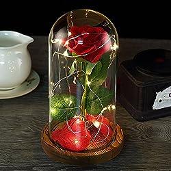 """""""La Bella y la Bestia"""" Rose Kit Rosa de Seda roja y luz LED con pétalos caídos en cúpula de Cristal Sobre una Base de Madera, Mejor Regalo para el día de San Valentín, Boda, Aniversario, cumpleaños"""