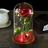 'La Bella y la Bestia' Rose Kit Rosa de Seda roja y luz LED con pétalos caídos en cúpula de...