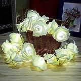 ILOVEDIY 2.5 Mètres 20-LED Guirlande Lumineuse Forme de Fleurs Rose (blanc)