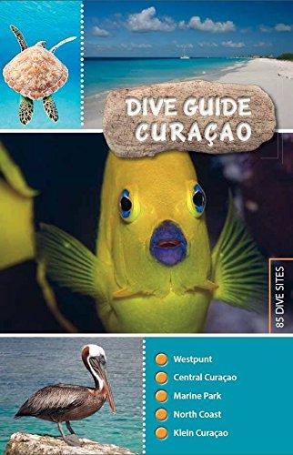 Dive guide Curaçao Tauchen Bonaire