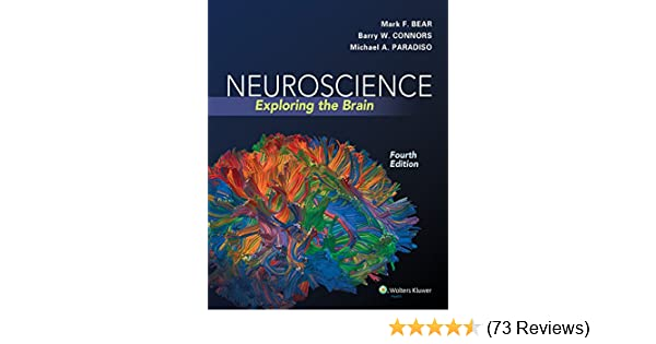 Neuroscience exploring the brain ebook mark f bear barry w neuroscience exploring the brain ebook mark f bear barry w connors michael a paradiso amazon kindle store fandeluxe Choice Image