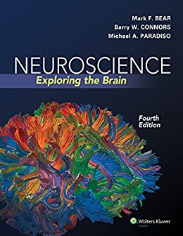Neuroscience exploring the brain ebook mark f bear barry w neuroscience exploring the brain by bear mark f connors barry fandeluxe Image collections