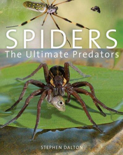 spiders-the-ultimate-predators