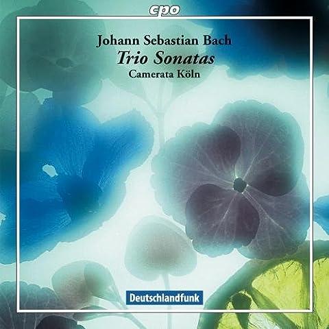 J.S Bach: Trio Sonatas (Trio Sonatas Bwv525/ 527/ Bwv1027-1029 In Special Arrangements)