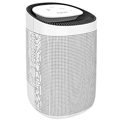 hysure® 2-in-1 Dehumidifier Air Purifier, Removes 750ml/day, 1000ml Water Tank, With True HEPA Filter, Portable Air Cleaner and Damp and Moisture Absorber For Home