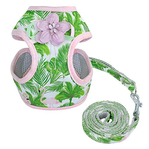 WINNER POP Hawaiian Style Mit Schutzbund - Verstellbare Soft Mesh Weste Für Gehen, Outdoor, Reisen, Shopping, Grün, M