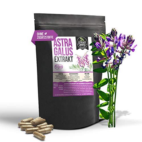 Asthma Tabletten (Astragalus EXTRAKT • 240 KAPSELN • 4000mg normales Tragant Pulver durch 10:1 Extrakt • vegan • ohne Zusätze Füll- und Fließmittel)