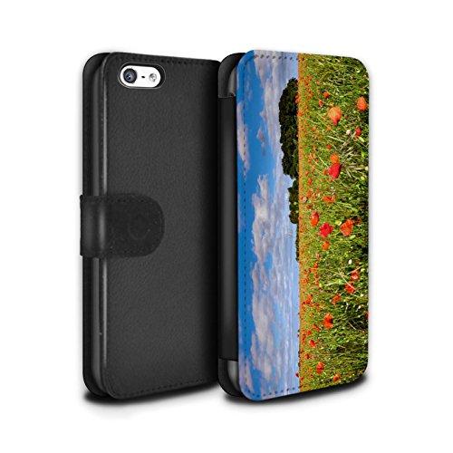 Stuff4 Coque/Etui/Housse Cuir PU Case/Cover pour Apple iPhone 5C / Pack 8pcs Design / Campagne Colombie Collection Champ