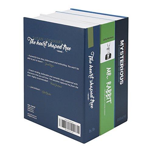 Geldkassette Buchattrappe XL Geldversteck - 5