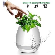 Home - Altavoz Bluetooth inalámbrico Recargable Micro USB - Maceta Musical con Piano y luz LED - Planta Piano musical- ideal Regalo - Music Pot (Blanco)