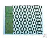 Traliccio estensibile in PVC mt. 3x1 colore verde immagine