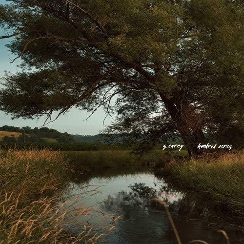 Hundred Acres (Colored Vinyl) [Vinyl LP]