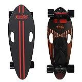 WNZL Skateboard électrique Longboard avec télécommande, portée de 15 km, jusqu'à 28 km/h, Maple Deck pour Les Ados des banlieues