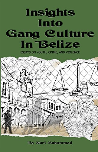 Insights Into Gang Culture in Belize: Essays on Youth, Crime and Violence (English Edition)