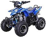 Kinder Quad S-5 Polaris Style 125 cc Motor Miniquad 125