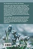 Flora Helvetica - Illustrierte Flora der Schw...Vergleich