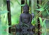 Posterlounge Acrylglasbild 100 x 70 cm: Buddha Bambus von Renate Knapp Waldundwiesenfee - Wandbild, Acryl Glasbild, Druck auf Acryl Glas Bild