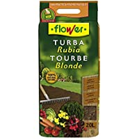 Flower 80081 Substrato Turba Rubia, Marrón, 30x5x55 cm