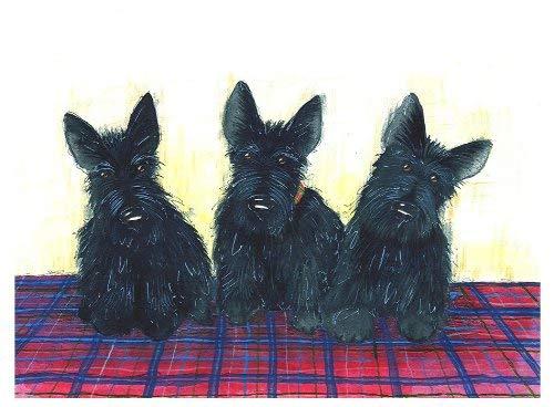 Castle Melamine diseño terrier escocés cuadros escoceses