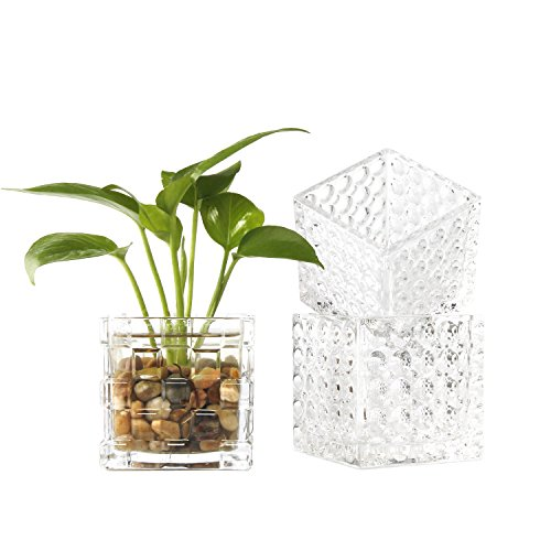 Rachel's Choice Würfelform 8cm Glas Quadrat Vasen Teelicht Halter Teelichtgläser 3 Design Set
