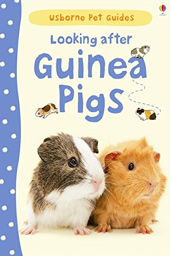 Looking After Guinea Pigs (Pet Guides)