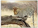 Wallario Stilvolle Glasunterlage/Schneidebrett aus Glas, Leopard auf Baumstamm in Afrika, Größe 30 x 40 cm, Kratzfest, aus Sicherheitsglas