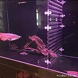 FidgetGear Trennwand für Aquarien, Acryl, mit Löchern und 4 Saugnäpfen, 2,1 x 2,9 m