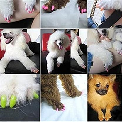 Qiao Niuniu New 20Pcs/Lot Colorful Soft Pet Dog Cats Kitten Paw Claws Control Nail Caps Cover #apowu522# (color: Red… 6