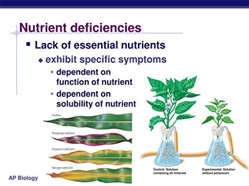 TSR Organic fertilisers & Pesticides Homeo Micronutrient Garden Fertilizer Granules with 15 Macro and Micro Nutrients, 800 g