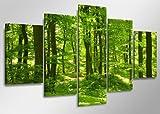 bestpricepictures 160 x 80 cm Bild auf Leinwand Grün Wald 5507-SCT deutsche Marke und Lager - Die Bilder/Das Wandbild/der Kunstdruck ist fertig gerahmt