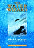 The Water Wizard – The Extraordinary Properties of Natural Water (Ecotechnology Book 1)
