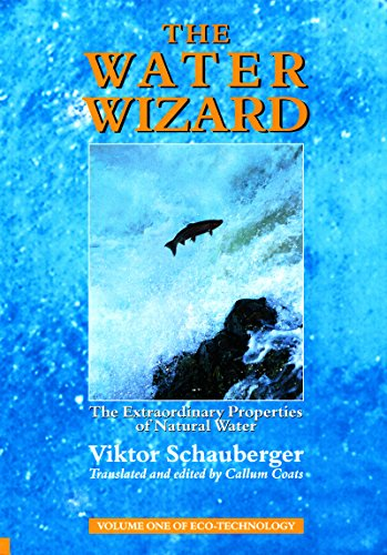 The Water Wizard – The Extraordinary Properties of Natural Water: 1 (Ecotechnology)