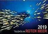 Tauchen im Roten Meer 2019 (Wandkalender 2019 DIN A2 quer): Eine faszinierende Reise unter Wasser ins Blaue des Roten Meeres (Monatskalender, 14 Seiten ) (CALVENDO Sport)