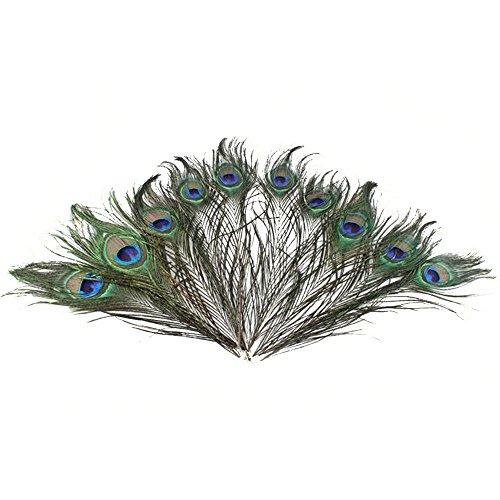 50pcs 25-30cm Schöne Natürliche Peacock Tail Feathers Pfauenfeder für Halloween Party Handwerk Kunst Kleid Hüte Braut (Tail Feather Peacock)
