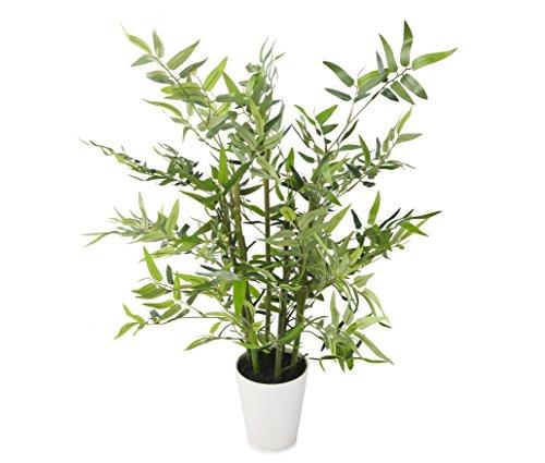 closer2nature Künstliche 2FT 7,6cm grün Bisset Bambus Baum in einer dekorativen Weiß Topf