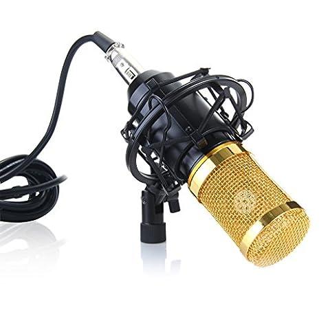 Wanway BM-800(Schwarz) Professionelle Studio Rundfunk & Aufnahme Kondensator-Mikrofon Kit, Kit besteht aus: 1x BM-800 Kondensator-Mikrofon + 1x Verstellbare Aufnahme-Mikrofon Federung Scherenarm Stand mit 1x Tisch Klemm Stück +1xMikrofon Erschütterungsabsorber + 1x Mikrofon-Windschutz Pop- Filter Masken Schirm + 1x Kugel-Typ Anti-wind Schaum Kappe + 1x 3.5mm Male auf XLR Female