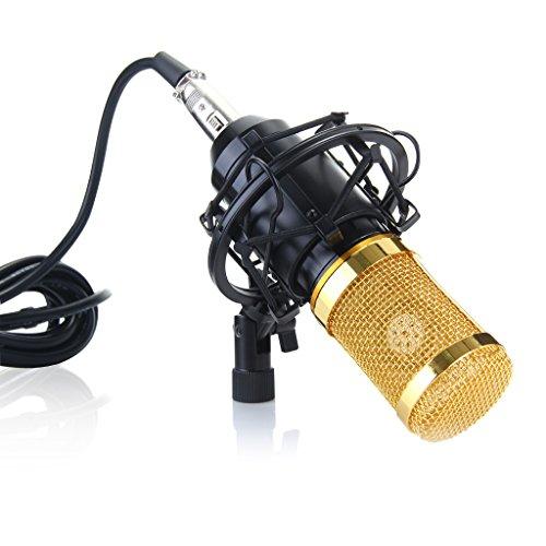 Wanway Noir BM800 Micro Microphone Condensateur Professional Studio Radio Record Kit Comprend: (1) BM-800 Microphone à Condensateur + (1)Microphone Mic Suspension Ciseaux Bras Perche + (1) Support Antichocs de Microphone Métal + (1)Filtre Anti-vent et Anti-pop Pour + (1) Câble de Microphone