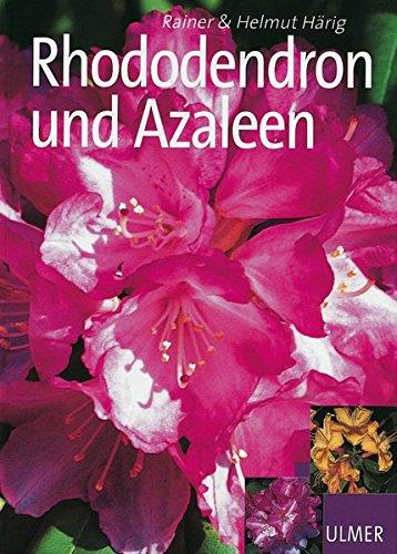 rhododendron-und-azaleen