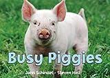 Busy Piggies (Busy Book)