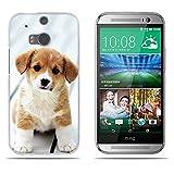 Fubaoda HTC M8/M8S Hülle,[Chiwan Welpe] Anti-Dropping PC Handy-Tasche Back-Cover Ultra Slim Weich Silikon Transparent Designs Schutzhülle für HTC M8/M8S