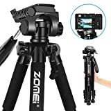 Lightweight Tripod - Zomei Z666 Compact Lightweight Travel Tripod with 3 Way Head